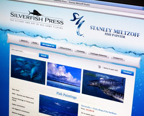 Silverfish Press Website - do you need a new website?